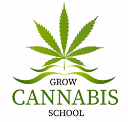 Grow Cannabis School