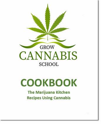 cannabis-school-cookbook